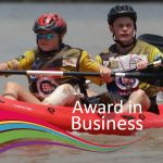 award_in_business